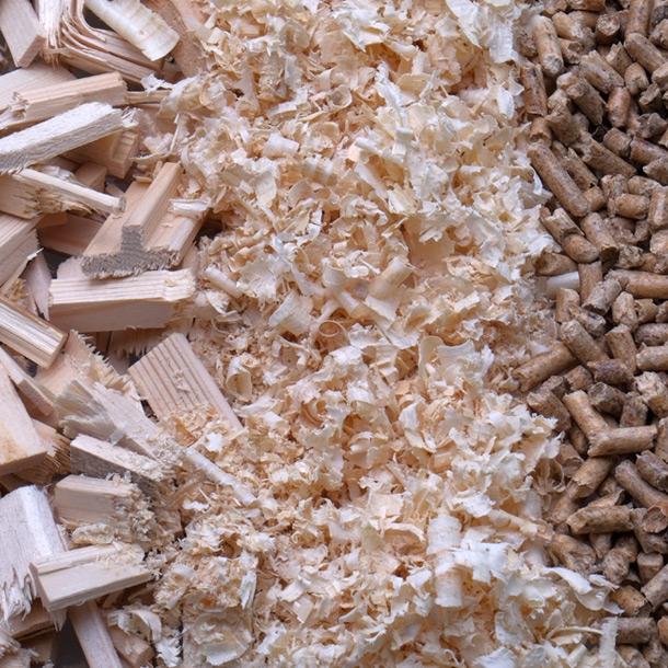 home-legno